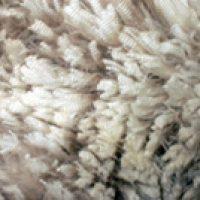 fleece1-2009